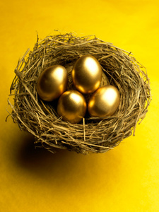 gold egg nest-resize-380x300